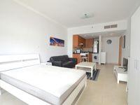 Studio Apartment in Global Lake View-photo @index