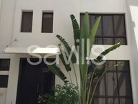 4 Bedroom Villa in Qurum-photo @index
