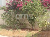 4 Bedroom Villa in Mangrove One