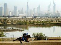 Land in Meydan Avenue-photo @index