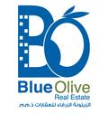 BlueOlive