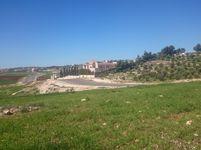 Land in Marj Al-Hamam-photo @index